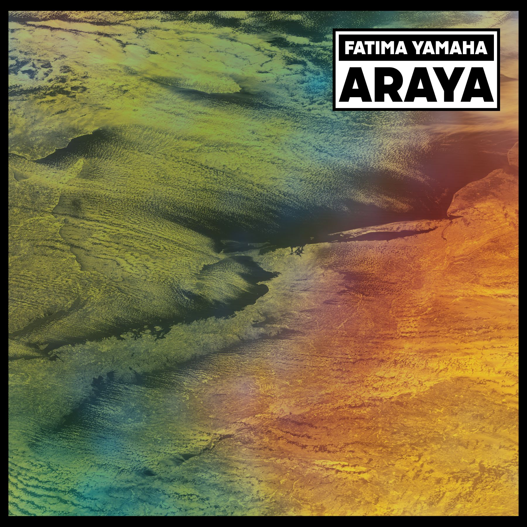 araya-artwork